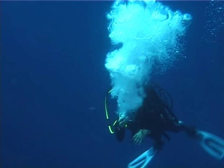 Red Sea - Egypte 2000 \My first video!