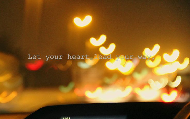Let your heart lead your way. © - @thatlawyertrots