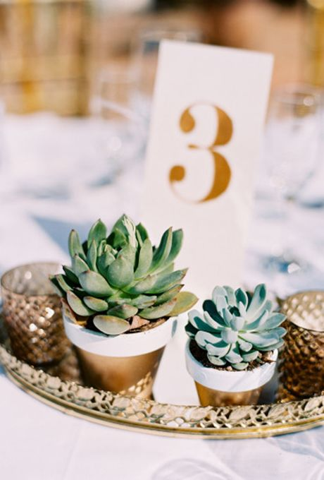 Brides.com: . For centerpieces that can withstand even the warmest tropical setting, consider a mix of succulents in various sizes and colors.
