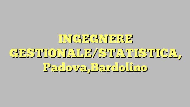 INGEGNERE GESTIONALE/STATISTICA, Padova,Bardolino