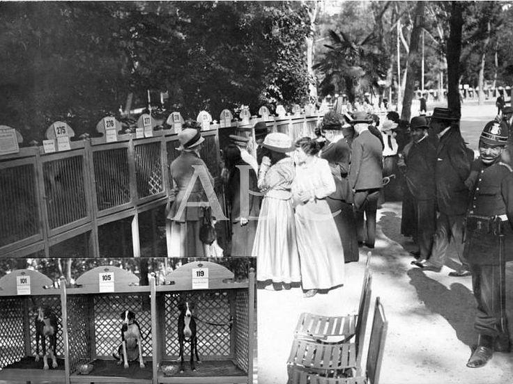 Madrid, mayo de 1916. Exposición canina. Aspecto parcial de las instalaciones del Parque del Retiro: en el ángulo inferior izquierdo, tres d...