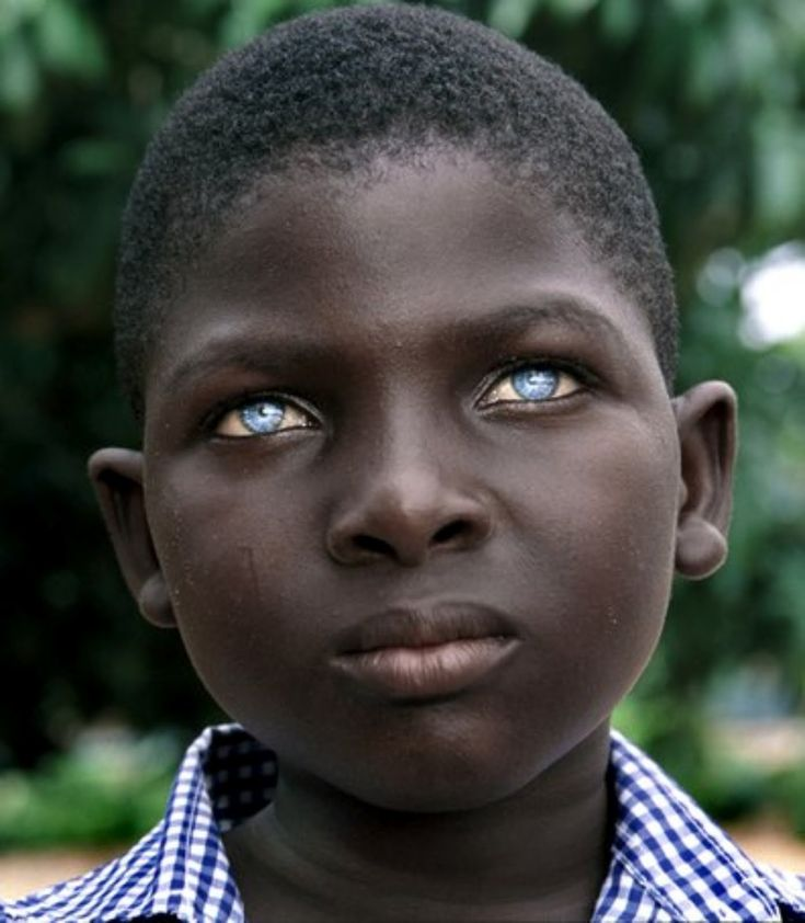 Famous African American Photographers | TRIP DOWN MEMORY LANE: BLACKS WITH BLUE EYES: NATURAL PHENOMENON OR ...