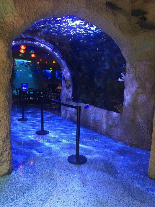 Aquarium Restaurant Fish Tunnle