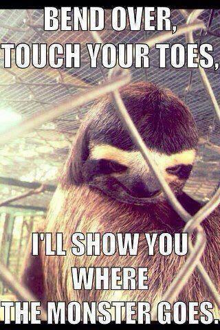 Rape sloth.....so wrong but so god damn funny!!