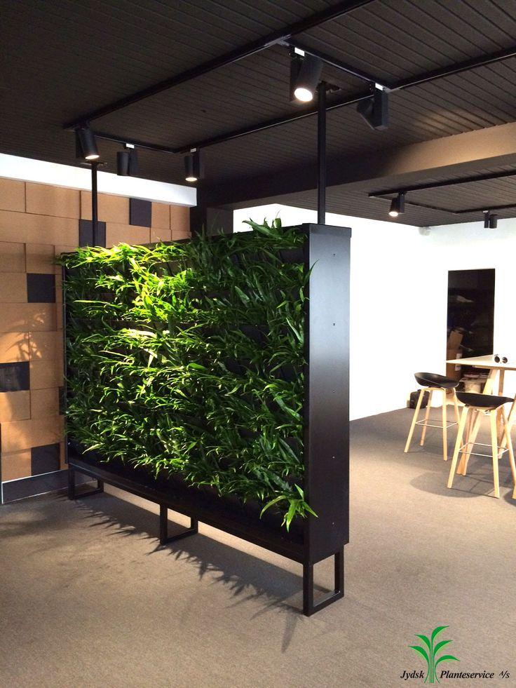 Fritstående plantevæg i showroom... Ingen teknik Ingen afløb - alt er integreret i væggen. Kunne kalde det en plug and 'play' plantevæg.  #plantevæg #showroom #jydsk #interiør
