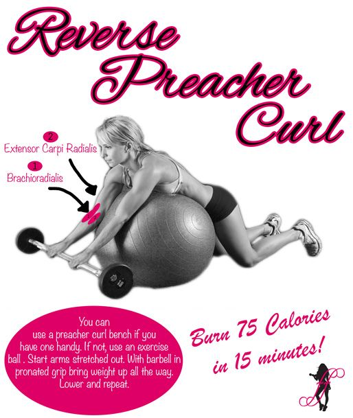 Muscle Building Tip - Reverse Preacher Curl. Define Your Arms =>  http://www.flaviliciousfitness.com/blog/2013/03/18/reverse-preacher-curl-for-muscle-building/