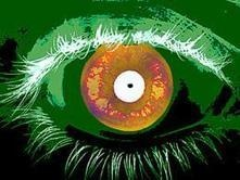 Iris recognition report evaluates 'needle in haystack' search capability