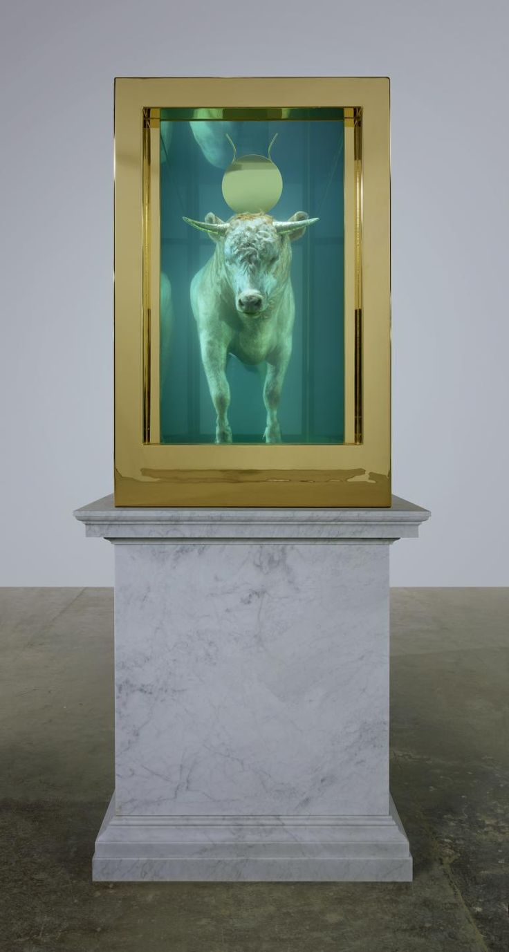 Damien Hirst - The Golden Calf, 2008. The work's title refers to the Exodus account of the Israelites' idolatrous worship of a Golden Calf during Moses's absence. As in traditional artistic depictions of the idol, Hirst's calf is crowned with a sun disc of solid gold, a symbol of pagan deification. The artist named another work shown at Sotheby's – a similarly displayed young calf with golden hooves – 'False Idol'