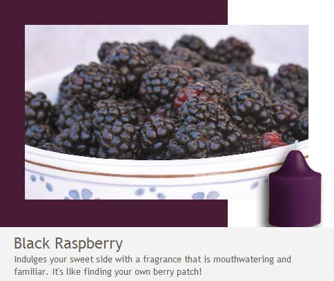Black Raspberry: Like finding your own berry patch - indulge your sweet side with a fragrance that is mouthwatering and familiar!