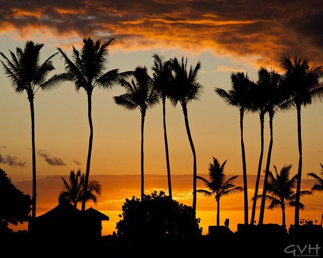 Best Hawaii Vacation Deals Ideas On Pinterest Hawaii Deals - Hawaii vacation packages 2016