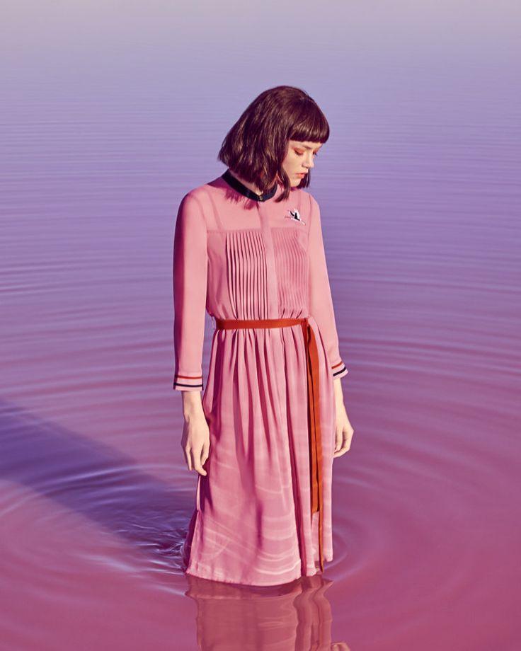 Shirt dress - Dusky Pink | Dresses | Ted Baker UK