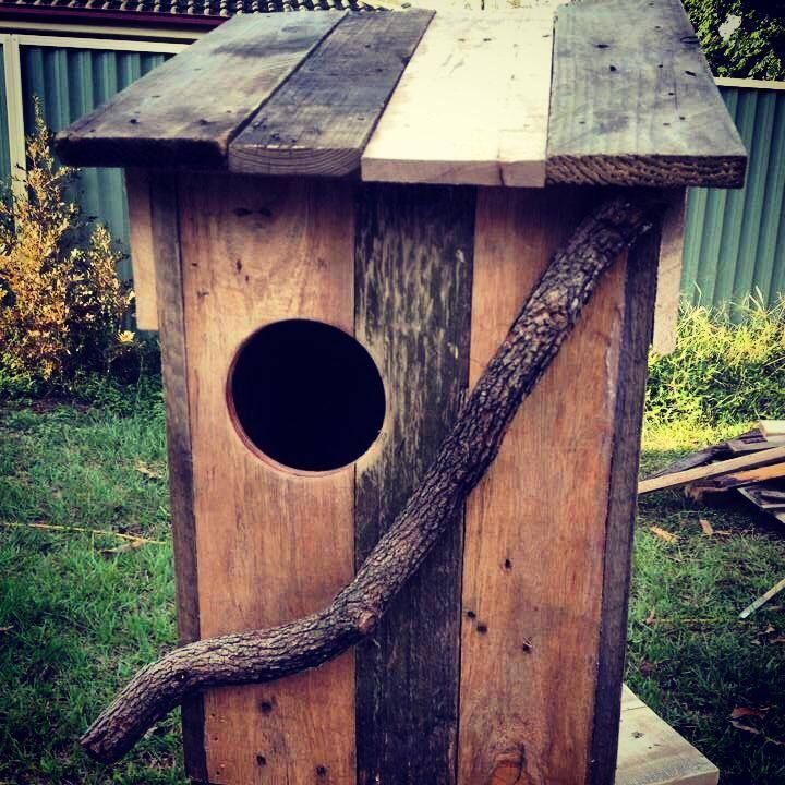 We sell the CUTEST possum / wildlife boxes for you to hang in your trees and keep your wildlife safe through winter. Check us out at facebook.com/PalletLifeAustralia