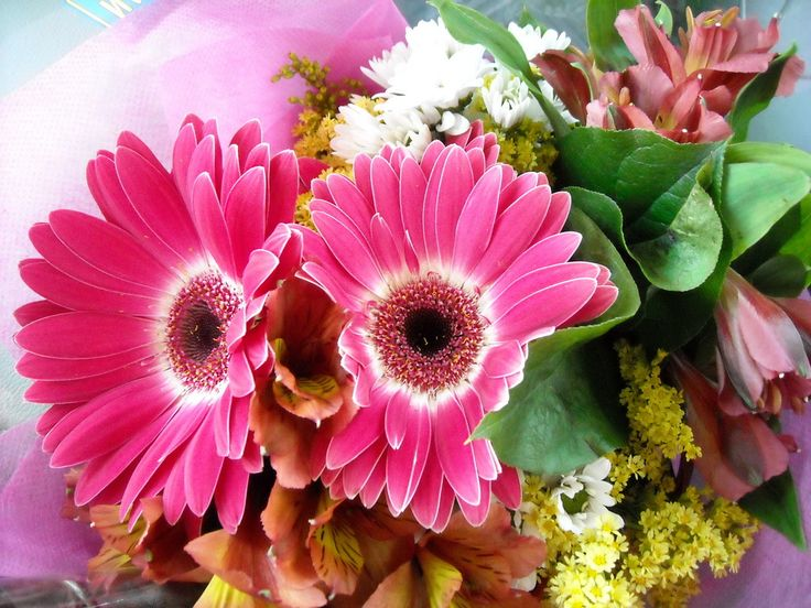 Poze minunate cu buchete de flori pentru mireasa, idei pentru nunta ta, fotografii desktop minunate cu buchete de trandafiri negri pentru telefon, computer, laptop, netbook, ipad, etc. Imagini cu...