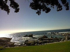 The hanging gardens of Camps Bay