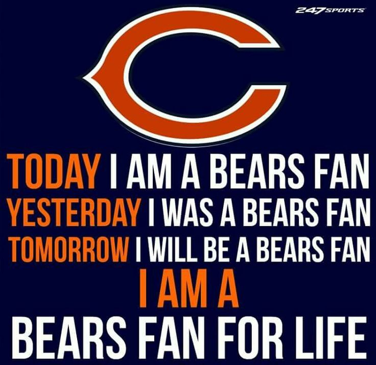 2017 Bears Season