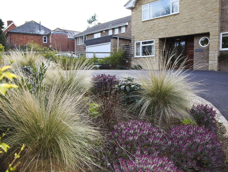 Low Maintenance Landscaping with Bushes