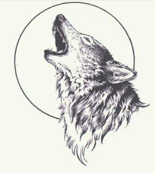 Lone wolf                                                       …