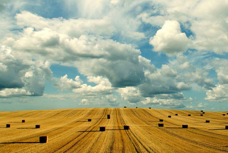 End of Harvest