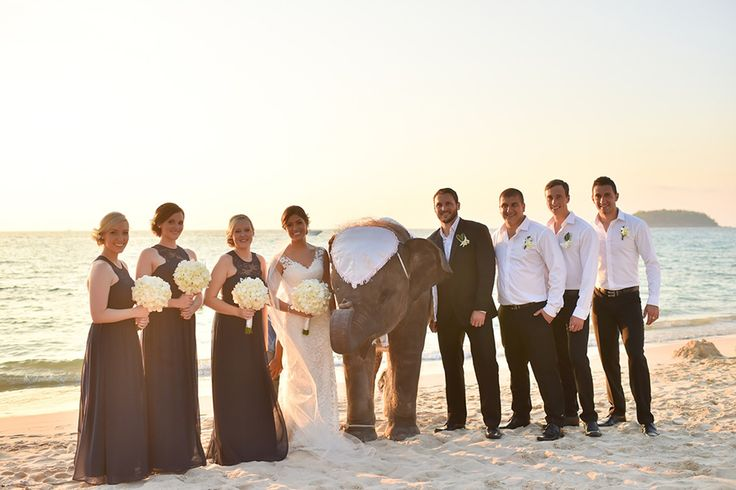 Wedding of Jacquelyn and Andrew,  photography: Mambo Photography