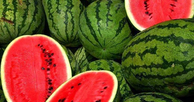 manfaat-lapisan-putih-buah-semangka