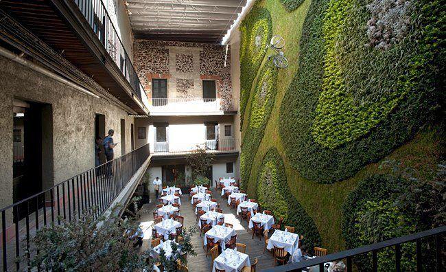 Vertical Garden Feature. Cherem Serrano Arquitectos converts a 17th-century palace in Mexico City into a hip hotel.