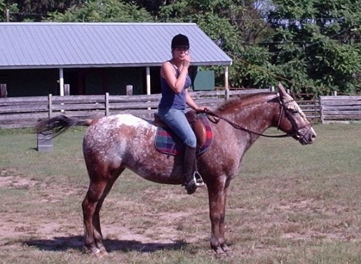 Need to work up my leg muscles for ridding  this summer (: