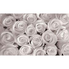 Poster mural XXL Roses noir et blanc