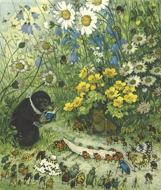 This is the sort of illustration that, as a child, gave me a love of nature. There is so much to look at and I loved the idea that everything talked to each other...another world. Erich Heinemann / Seven dots