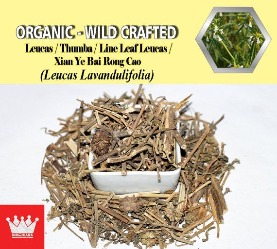 Diaphoretic, stimulant, chronic leg sores, dermatosis, as an anthelminthic for roundworms, and for appeasing affections of the nerves, malarial fever, itch, headaches and vertigo, cleanse stinking wounds from fly larvae, remove mucus, stomachic, treat colic of children, wounds, sores; especially the eyes and nose, chronic skin diseases; psoriasis and scabies, mild fevers, colds, rheumatism and snake bites, as a decoction against roundworm, mainly for children, etc #DriedHerbs #HerbalRemedies