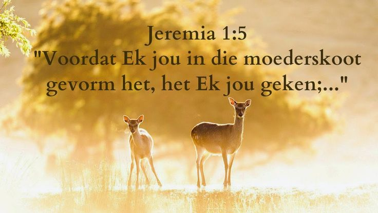Afrikaanse Inspirerende Gedagtes & Wyshede: Jeremia 1:5