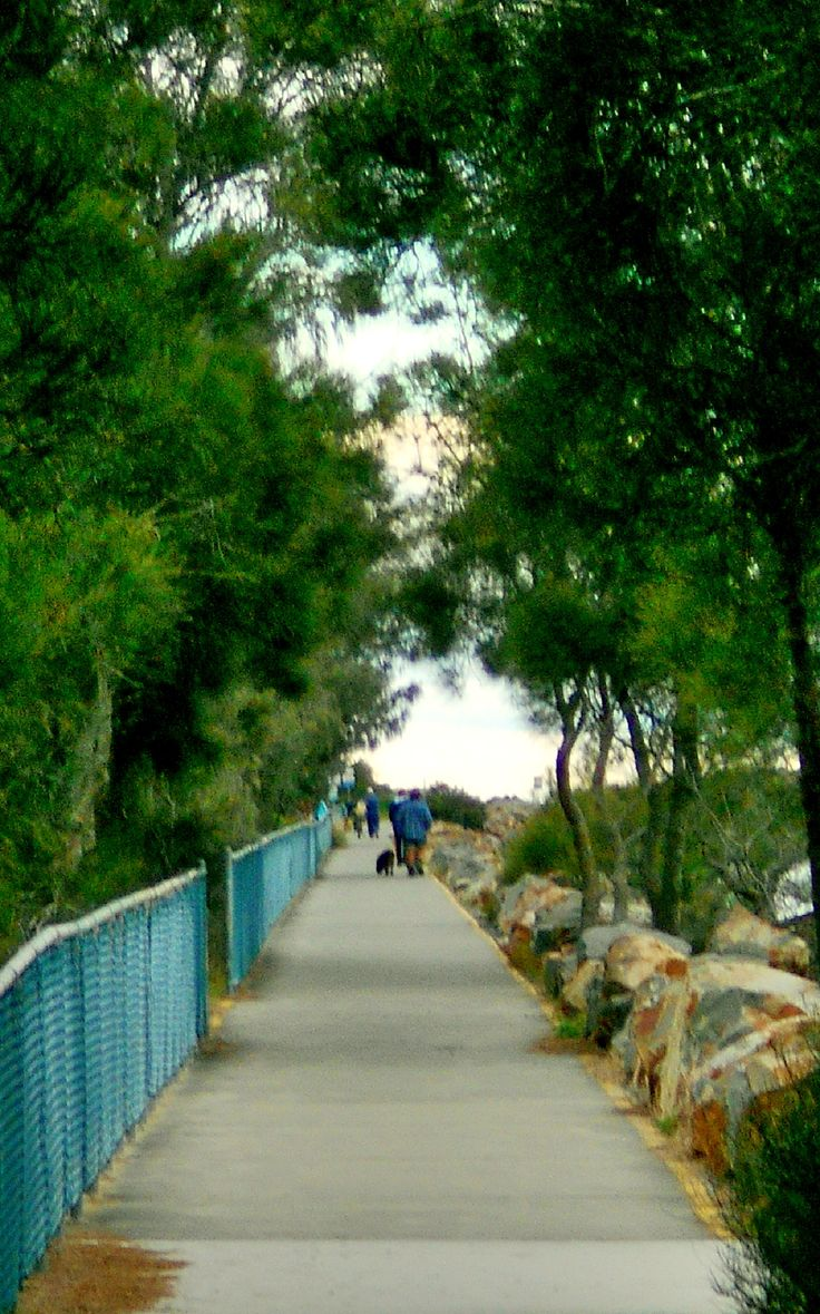 North Haven: Path to the beach along the Camden Haven River