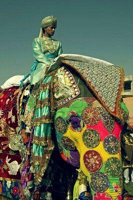 Fabulously decorated elephant