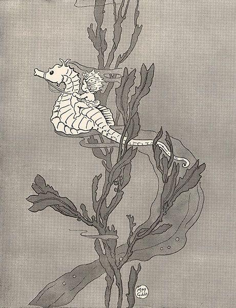 Gumnut Baby Riding Sea horse