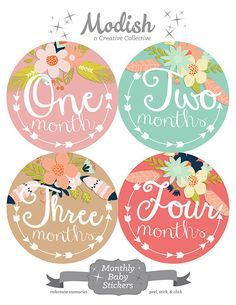 FREE GIFT, Monthly Baby Stickers Girl, Baby Month Stickers Girl, Month Stickers Girl, Baby Shower Gift, Arrows, Tribal, Feathers, Flowers
