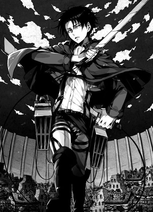 levi attack on titan  Did you know that this guy(despite his size) is 34 years old?