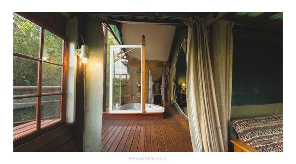 'Glamping' in style in one of the Teniqua Treetops tree houses, spa bath and all in the Knysna forest... www.teniquatreetops.co.za