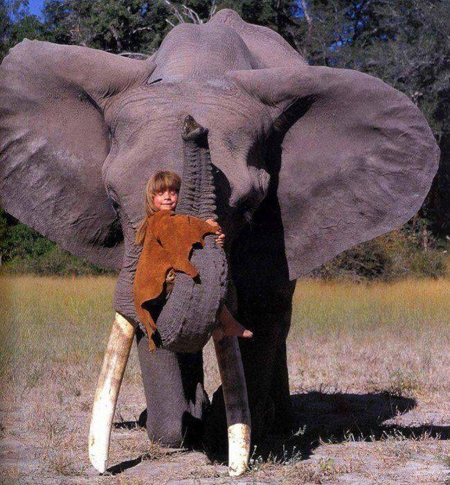 """Si chiama Tippi, ma per tutti è """"la piccola Mowgli"""". La sua casa è la Savana dove è cresciuta giocando con elefanti e dormendo con cuccioli di ghepardo.   Tippi ha vissuto un'infanzia insolita instaurando un legame fortissimo con la natura. Un legame che non si spezzerà mai."""
