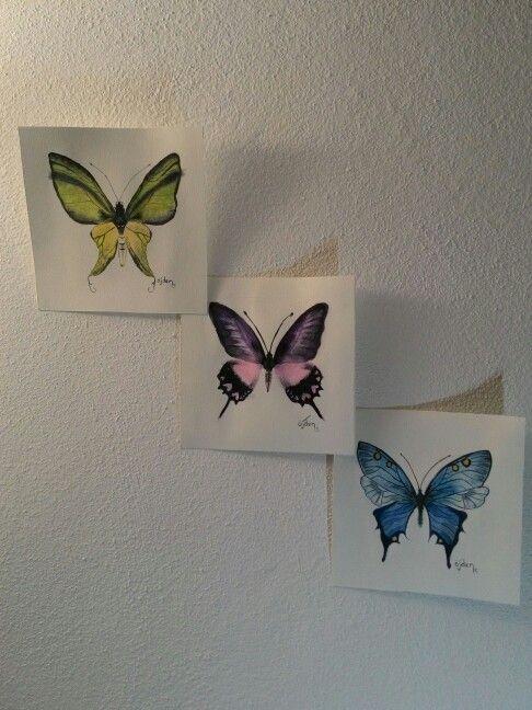 butterfly watercolot