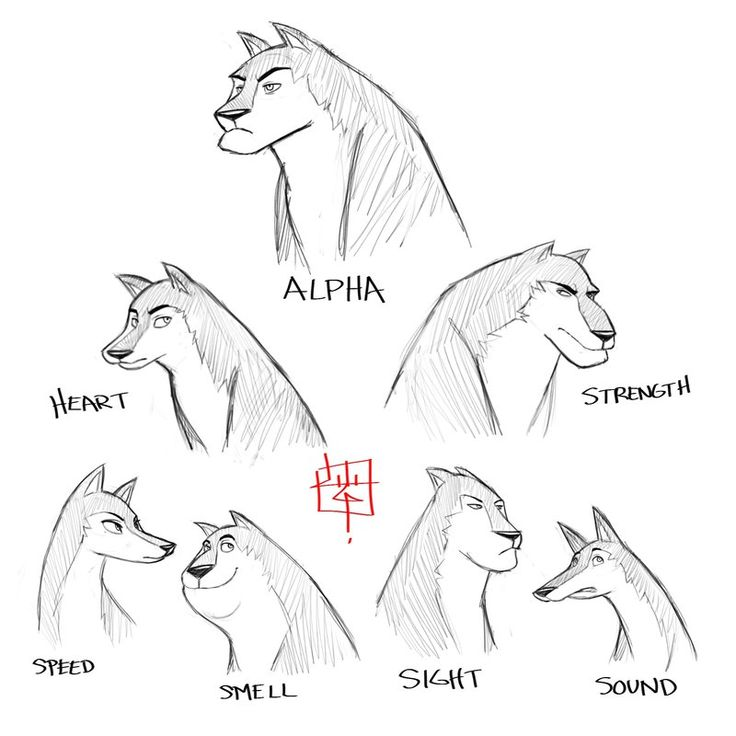 Wolf Pack Sketch Concept By *LuigiL On DeviantART | Character Design Animals | Pinterest | Wolf ...
