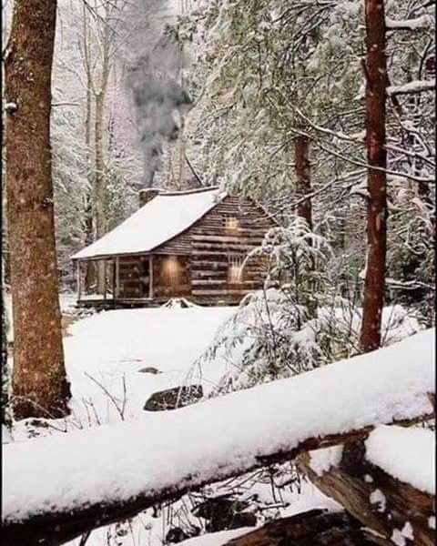 cabin magazine on instagram u201cwould you live here cabins rh pinterest com
