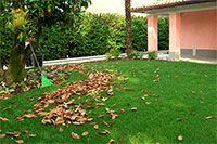 La #manutenzione del #giardino in #inverno: cosa fare per il tuo verde.  Inverno uguale letargo? Non per tutti. Prenditi cura del tuo verde anche nei mesi freddi. Ecco i suggerimenti per la manutenzione del giardino in inverno.