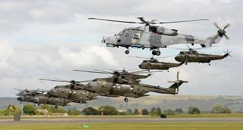 Royal Marine Commando Merlins, Sea Kings; Royal Navy Wildcat