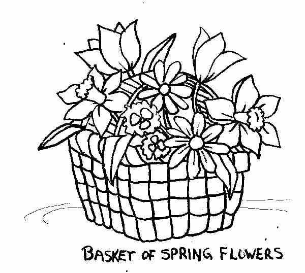 Flower Basket Line Drawing : Best sketches of flowers in a vase images on pinterest