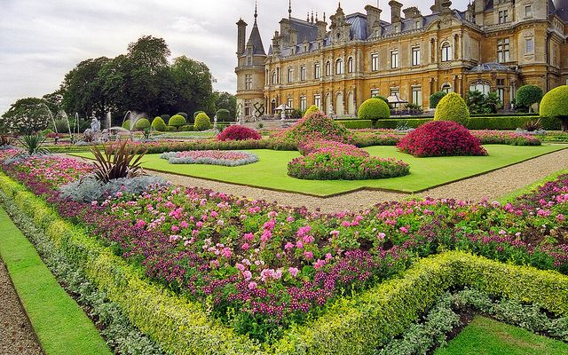 Waddesdon Manor Gardens (National Trust) , Buckinghamshire, UK | Traditional bedding plants used in this Victorian garden (21 of 30) by ukgardenphotos, via Flickr