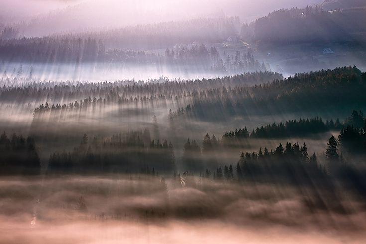 FORESIGHT - LANDSCAPES  Boguslaw Strempel