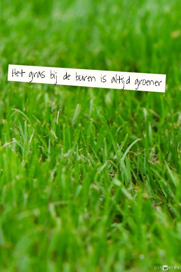 Het gras bij de buren is altijd groener #ECOstyle #citaten #spreuken