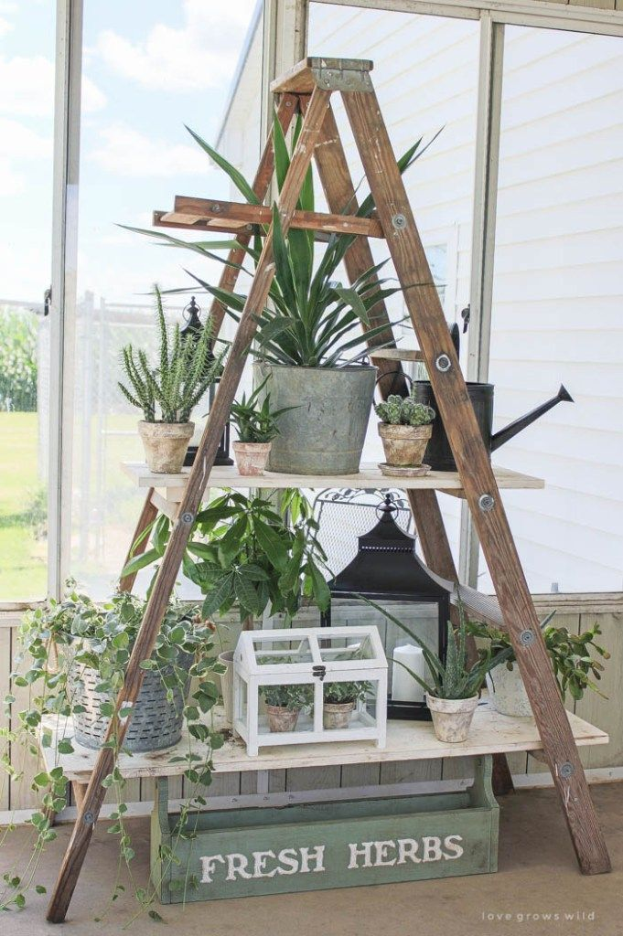 Wooden Ladder for Plants