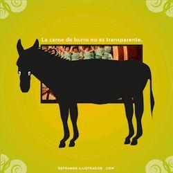 La carne de burro no es transparente. | http://tmblr.co/ZtwVgn1TRKcyV | #refrán #dicho #espanhol #español #spanish #spanisch #espagnol
