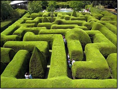 The first thing I'm going to do when I inherit my estate is install a luxurious labyrinth of hedgerows