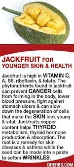 Jackfruit for young skin  vitamin C, cancer prevention